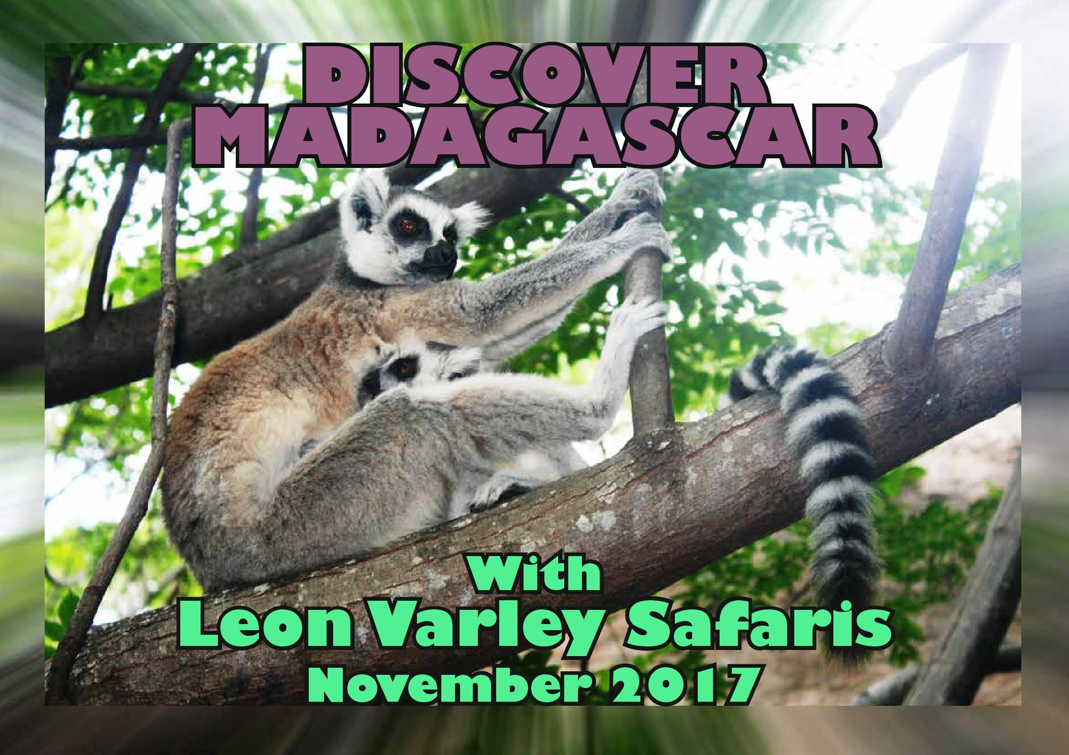 Discover Madagascar with Leon Varley Safaris