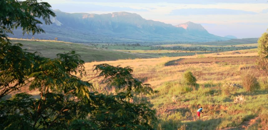 Discover Madagascar with Leon Varley
